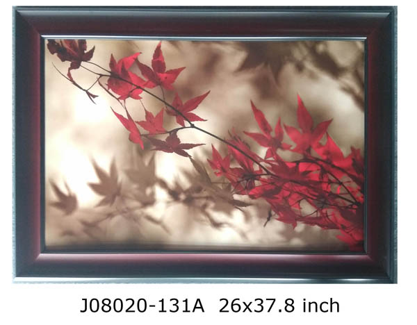 Framed Maple Leaves